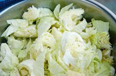 Stock Photo of fresh cabbage ingredient