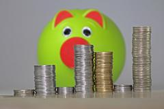 indian rupees with a piggy bank, concept - stock photo