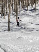 lone skier weaves her way through bare winter aspens - stock photo