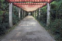 pergola passage - stock photo