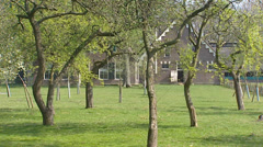 Traditional orchard at Dutch farmhouse called Scholtenboerderij Stock Footage