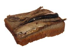 Sandwich of rye bread and sprat, isolated on white background Stock Photos