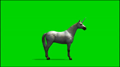 White Unicorn look around - separated on green screen Stock Footage