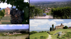 Vineyards in langhe, italy. Landscapes and castles collage. Stock Footage