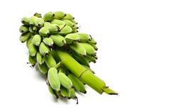 Stock Photo of green banana from organic farm