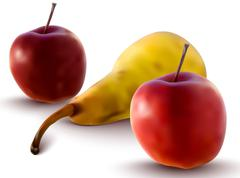 vector apples and pear - stock illustration