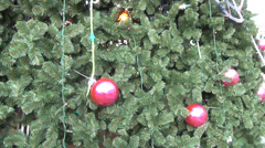 Close up of christmas tree branches colorful big ball garland Stock Footage
