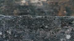 Tikal.Details of ancient Mayan pyramids. - stock footage