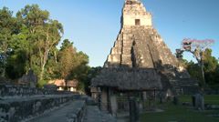 Mayan pyramids in the jungles of Guatemala Stock Footage