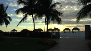 Stock Video Footage of Marco Island Palm Trees Sunset 02