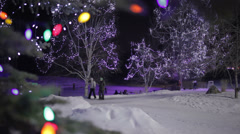 Skating Pond in Winter Stock Footage