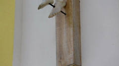 Tilt shot of a Jesus statue Stock Footage
