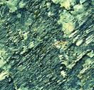 Stock Photo of quartz texture obliquely grooved