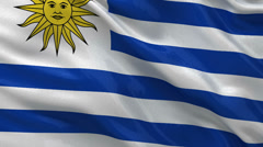 Flag of Uruguay - seamless loop Stock Footage