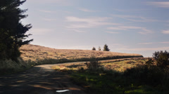 Pine trees and field along scenic road, No. California Stock Footage