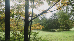 Secluded, open preserve (4 of 5) - stock footage