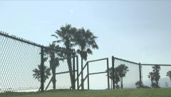 Palm Tree Park (in Los Angeles) - stock footage