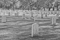 beaufort national cemetery - stock photo