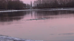 Desna river, Ukraine Stock Footage