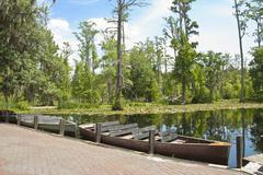 Cypress swamp boats Stock Photos