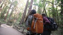 Hiking couple in forest Redwoods, San Francisco Stock Footage