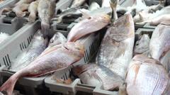 Fish Market 0411 2 - stock footage