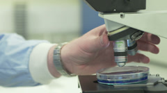 Scientist using a microscope adjusting lenses Stock Footage