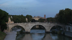 Thousands of starlings over Rome 189 Stock Footage