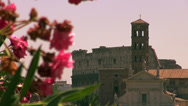 Stock Video Footage of Zoom out with flowers and colosseum in Rome