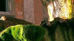 Fontana del Tritone or Triton Fountain  sculpted by Bernin Stock Footage