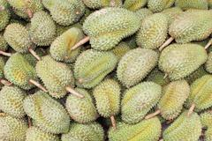 durian,delicious famous fruit in thailand - stock photo