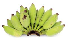 Stock Photo of green bananas isolated on white background