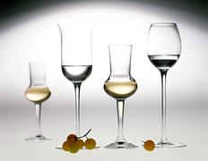Elegant glasses of grappa Stock Photos