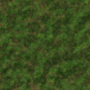 Stock Illustration of Mossy ground