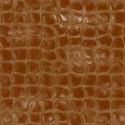 Alligator skin Stock Illustration