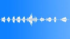 rake on stone - sound effect