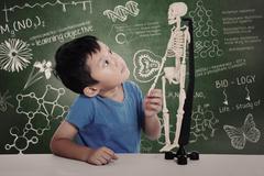 Asian boy with human skeleton Stock Photos
