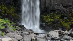 Vegetation and basalt rocks at the Svartifoss (Black waterfall), Iceland Stock Footage