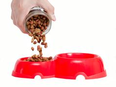 The hand fills a forage in a feeding trough for a cat. it is isolated on a wh Stock Photos
