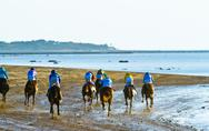 Stock Photo of horse race on sanlucar of barrameda, spain, august  2011