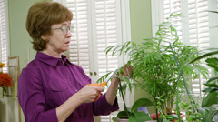 Mature woman trimming her plants Stock Footage