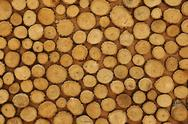 Stock Photo of wood grain in cut timber logs