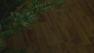 Stock Video Footage of Chrismas Tree Detail With A Globe On It