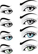 Elegant Eye Stock Illustration