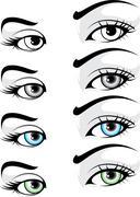 Elegant Eye Stock Illustration