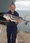 Large rod caught Seabass - stock photo