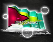 Stock Illustration of Flag Guyana quality designer flag