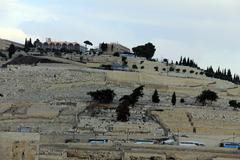 Mount of olives at the winter evening Stock Photos