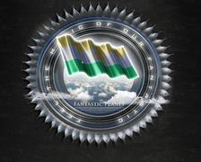 Flag Niger quality designer flag Stock Illustration