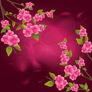 pink cherry blossoms - stock illustration